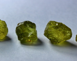 25.80 CT Natural Demontoid Green Garnet Rough Lot