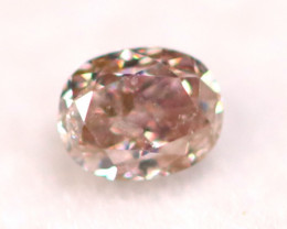 Argyle Pink Diamond 2.90mm Genuine Australian Pink Diamond B0923