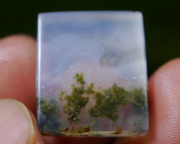 21.60 CT UNTREATED Beautiful Indonesian Moss Agate Picture