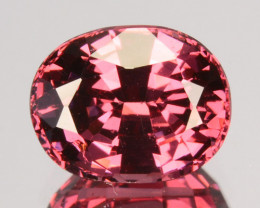 1.59 Cts Dazzling Natural Tourmaline Pink Oval Mozambique