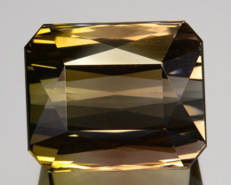 13.65 Cts Natural Bi-Color Tourmaline Octagon Cut Mozambique