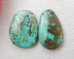 2pcs Turquoise Cabochons Gemstone ,Turquoise Cabochons E774
