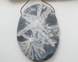 Natural Chrysanthemum Fossil Gemstone Stone Pendant, 72x52x11mm H9962