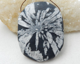 Natural Chrysanthemum Fossil Gemstone Stone Pendant H9959