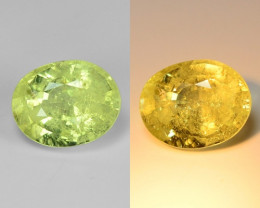 1.43 Cts Very Rare Yellowish Green Color Natural Chrysoberyl Gemstones