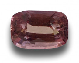 Natural Unheated Padparadscha|Loose Gemstone| Sri Lanka - New