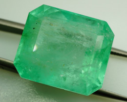 RARE  49.74 ct Natural Colombian Emerald - IGI Certified