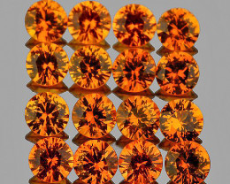 1.50 mm Round Machine Cut 50 pcs 1.08cts Orange Sapphire [VVS]