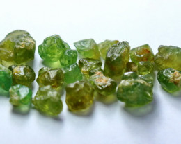 49.95 CT Natural Demontoid Green Garnet Rough Lot