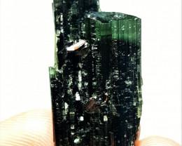 Amazing Bicolor Damage free Twin Tourmaline combine with Rare Tantalite  70