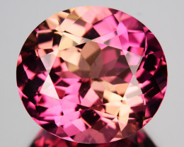 7.24 Cts DAZZLING Natural Tourmaline Sweet Pink Oval Mozambique