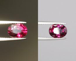 2.23 Cts Red To Purple  Garnet Gems.
