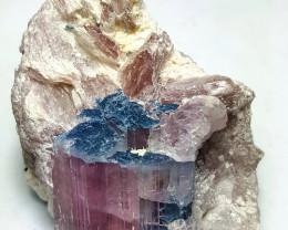 Amazing natural bicolor Damage free Blue cap Tourmaline with Lepdolite 115C