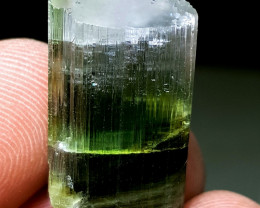 Amazing natural Tricolor damage free gemmy Tourmaline crystal 35Cts-P