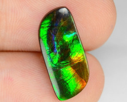 5.76 Cts Multi Color Play Natural Ammonite Gemstone From Canada