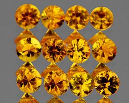 2.70 mm Round 12 pcs 1.13ct Intense Yellow Sapphire [VVS]