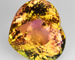 12.37 Cts Dazzling Natural Bi-Color Tourmaline Heart Mozambique