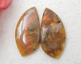 17CTS Twinkle Natural Ammonite Cabochon Pair ^ Fossil Cabochon Pair F33