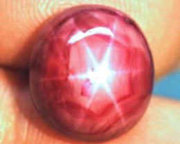 18.68 Carat Fancy, Fiery Star Ruby - Gorgeous
