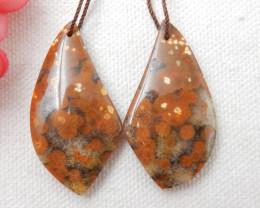 58cts Beautiful Ocean Jasper Earrings,Natural Jasper Summer Earrings F63