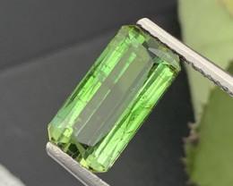 """NR"" 5.50 Carats Top Quality Natural Bi Color Green Tourmaline"