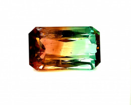 Watermelon Tourmaline 126.58ct