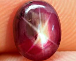 3.39 Carat Fancy Star Ruby - Gorgeous