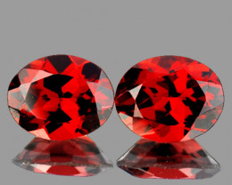 10x8 mm Oval 2 pcs 6.00cts Red Garnet [VVS]