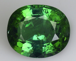 1.57 Cts AAA Grade Sparkling Tourmaline ~ Afghanistan TM61