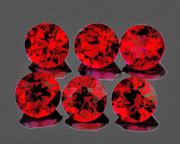 3.30 mm Round 6 pcs 1.03cts Red Spinel [VVS]