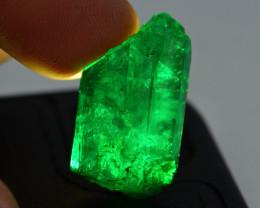 AAA Grade 16.30 ct Natural Swat Emerald ~ Rough