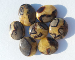 septarian palm stone a mix of limestone ,calcite and aragonite