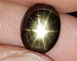 6.42cts, 12 Ray Star Sapphire,   Unheated,  Untreated,  Black Star