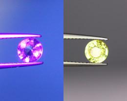 GFCO.  0.78Cts Natural Chrysoberyl Gems