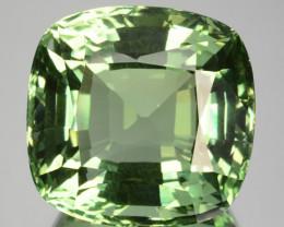 ~Supreme Grade~ 27.95 Cts Natural Green Prasiolite / Amethyst Brazil