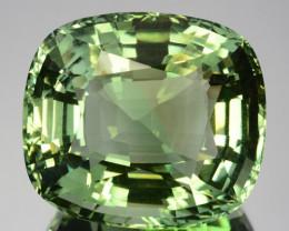 ~Supreme Grade~ 48.10 Cts Natural Green Prasiolite / Amethyst Brazil