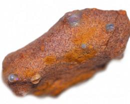 52.29 CTS OPALAIZED  DENTALIUM  FOSSILS-ELEPHANT TUSK. [M-FOSSIL219]