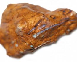 316.30 CTS OPALAIZED  DENTALIUM  FOSSILS-ELEPHANT TUSK. [M-FOSSIL224]