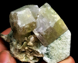 Amazing Natural Bicolor Apatite combine with Tourmaline and Mica 295Cts-P
