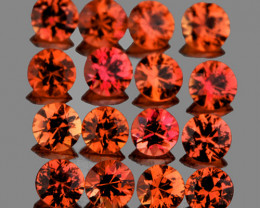 1.50 mm Round Machine Cut 50 pcs Pinkish Orange Sapphire [VVS]