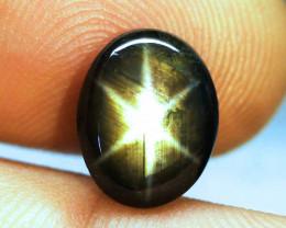 6.71 Ct. Thailand Black Star Sapphire - Gorgeous