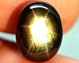 13.48 Carat Thailand Black Star Sapphire - Gorgeous