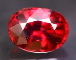 Rhodolite 2.99Ct Natural Red Rhodolite Garnet B2412