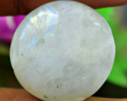 Genuine 24.00 Cts Untreated Moonstone Round Shape Cabochon