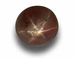 Natural Unheated Star padparadscha |Loose Gemstone|Sri Lanka - NEW