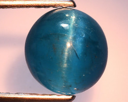 2.37 Ct Natural Cat's Eye Blue Apatite Rarest Gemstone. ATC 08