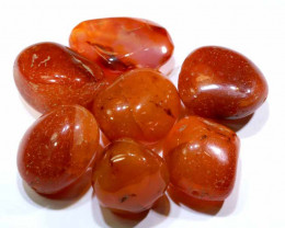 229 CTS -CARNELIAN BEADS DRILLED (7PCS)  NP-323