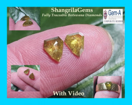 6.88mm 1.37ct Pair Deep Golden shield shape diamonds Fully Traceable