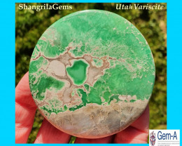 66mm 264ct Variscite Green cabochon round from Lucin, Utah USA