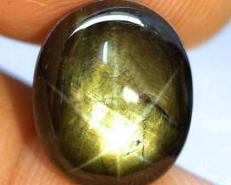 16.95 Carat Thailand Black Star Sapphire - Gorgeous